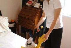 dezynfekcja parowa zabawek Carmen Mini Inox Verona HRC