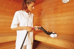dezynfekcja sauny myjką parową Evo 304 DET