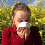 Jak pozbyć się roztoczy i alergenów z pomocą suchej pary?